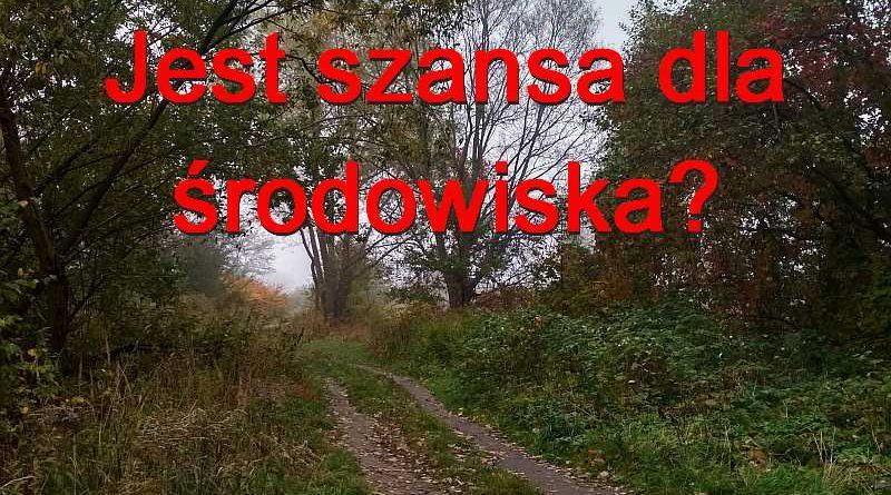 W Mysłowicach powstanie zespół do spraw ochrony zieleni i powietrza.